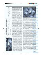 Kritik-Horrorladen-Musicalcocktail-16
